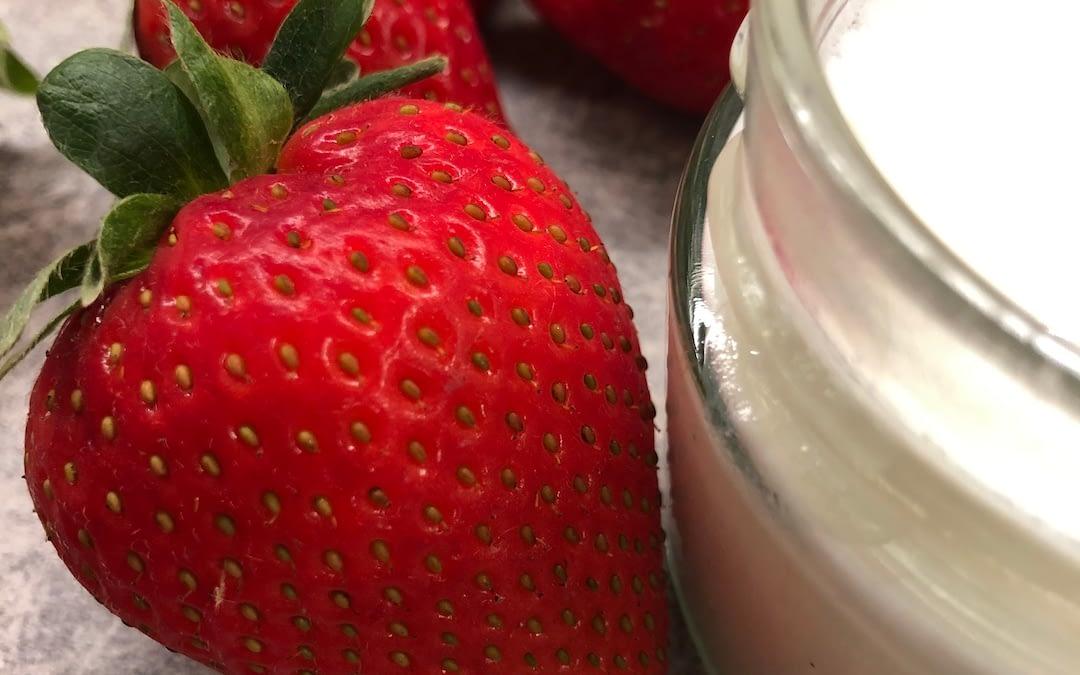 Yogurt vegetale fatto in casa